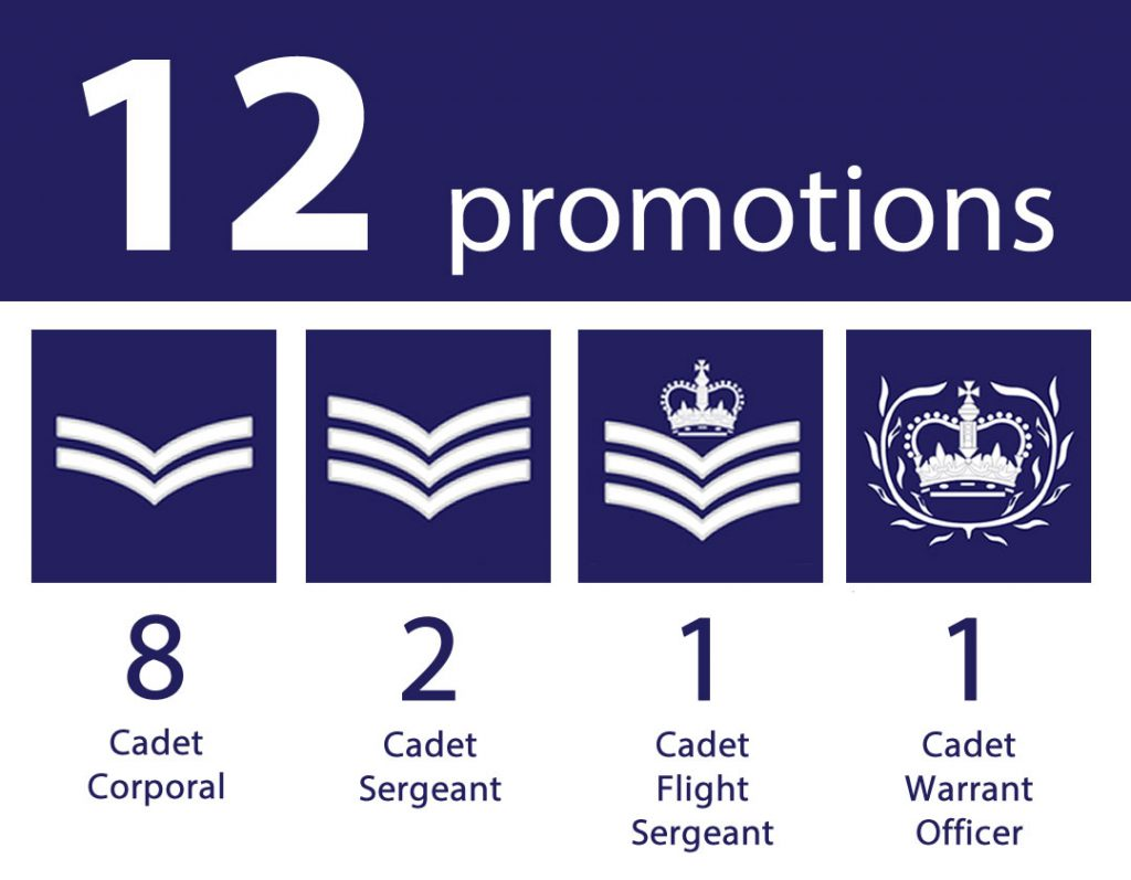 12 promotions during 2019.